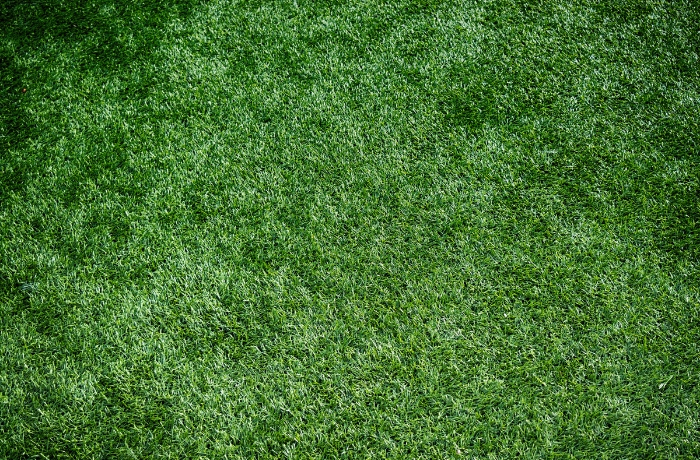 artificial turf franklin